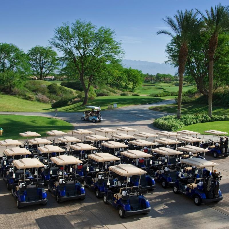 Golf cart fleet