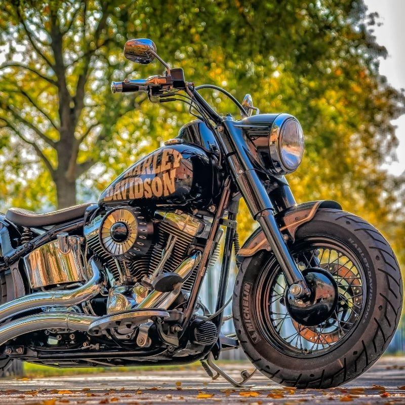 Harley Davidson cruiser